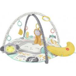 Γυμναστήριο Deluxe Fisher-Price® Snugamonkey HBG85